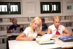 Estudiantes en biblioteca Fotografía de archivo libre de regalías