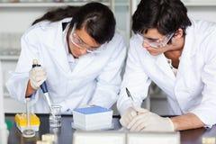 Estudiantes enfocados de la ciencia que hacen un experimento Foto de archivo libre de regalías