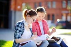 Estudiantes felices jovenes con los libros y las notas al aire libre Imágenes de archivo libres de regalías