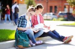 Estudiantes felices jovenes con los libros y las notas al aire libre Foto de archivo