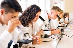 Estudiantes hermosos de la High School secundaria con los microscopios en laboratorio foto de archivo libre de regalías