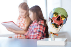 Estudiantes inspiradores productivos que leen un libro en la anatomía Fotos de archivo libres de regalías