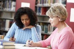 Estudiantes maduros que trabajan en biblioteca Imagenes de archivo