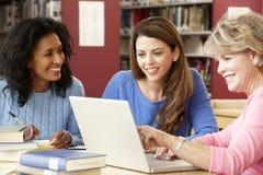 Estudiantes maduros que trabajan en biblioteca Imagen de archivo libre de regalías