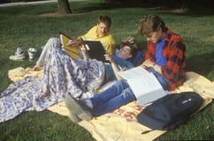 Estudiantes que estudian en el césped, Sunnyvale, CA fotos de archivo