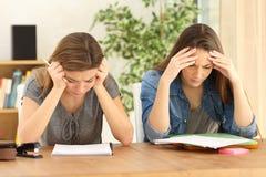 Estudiantes que estudian junto en casa Imagenes de archivo