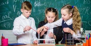 estudiantes que hacen experimentos de la biolog?a con el microscopio en laboratorio Educaci?n de la biolog?a Equipo de la biolog? foto de archivo
