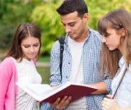 Estudiantes que leen un libro en el parque Fotos de archivo libres de regalías