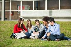 Estudiantes que se sientan junto en hierba en la universidad Imagen de archivo