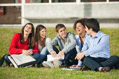 Estudiantes universitarios alegres que se sientan en hierba en Fotografía de archivo