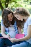 Estudiantes universitarios felices que trabajan junto Fotos de archivo libres de regalías