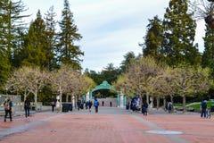 Estudiantes universitarios que caminan para clasificar Foto de archivo
