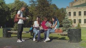 Estudiantes universitarios que hablan durante estudio al aire libre metrajes