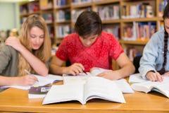 Estudiantes universitarios que hacen la preparación en biblioteca Fotos de archivo libres de regalías