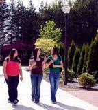 Estudiantes universitarios que recorren para clasificar Imagenes de archivo
