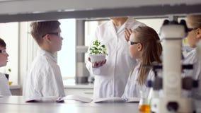 Estudiantes y profesor con la planta en la clase de Biología metrajes