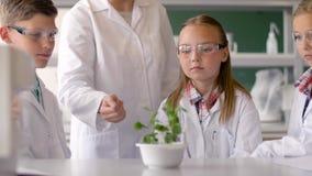 Estudiantes y profesor con la planta en la clase de Biología almacen de metraje de vídeo