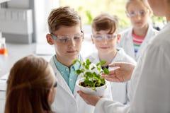 Estudiantes y profesor con la planta en la clase de Biología imágenes de archivo libres de regalías