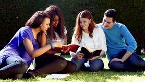 Estudio al aire libre de la biblia del grupo almacen de video