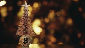Estudio de la cantidad del hd del bokeh del oro del árbol de abeto de la moneda de Bitcoin metrajes