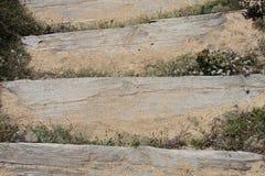 Estudio de los pasos de madera fijados en arena Fotografía de archivo
