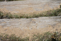 Estudio de los pasos de madera fijados en arena Imágenes de archivo libres de regalías
