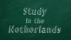 Estudio en los Países Bajos