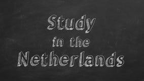 Estudio en los Pa?ses Bajos