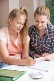 Estudios caseros femeninos de Helping Girl With del profesor particular Imágenes de archivo libres de regalías