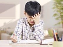 Estudo asiático da criança Foto de Stock