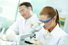 Estudo clínico foto de stock