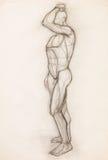 Estudo da anatomia do corpo humano Imagens de Stock