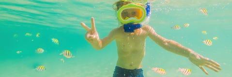 Estudo de natureza subaquático, menino que mergulha na BANDEIRA azul clara do mar, FORMATO LONGO imagens de stock