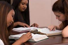 Estudo devocional da Bíblia das mulheres foto de stock