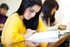 Estudo dos estudantes universitários Fotografia de Stock
