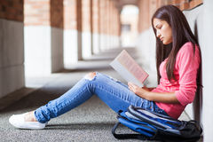 Estudo latino-americano do estudante universitário Foto de Stock