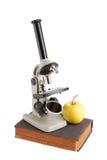 Estudos de laboratório pelo microscópio fotografia de stock