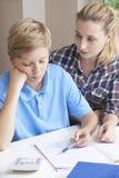 Estudos home fêmeas de Helping Boy With do tutor fotografia de stock royalty free