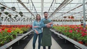 Estufa agrícola de Walks Through Industrial do coordenador com fazendeiro profissional Examinam o estado de plantas e filme