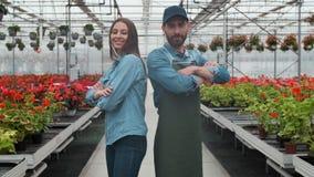 Estufa agrícola de Walks Through Industrial do coordenador com fazendeiro profissional Examinam o estado de plantas e video estoque