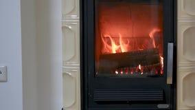 Estufa ardiente de madera casera nacional almacen de metraje de vídeo