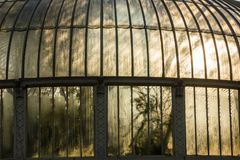 estufa Jardins botânicos nacionais dublin ireland fotografia de stock royalty free
