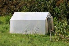 Estufa plástica do quintal com as portas do metal cobertas com o nylon branco e cercadas com grama verde sem cortes alta e as árv imagens de stock