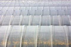 Estufas Fotografia de Stock