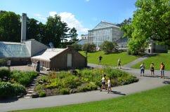 Estufas no jardim botânico da universidade dentro Fotografia de Stock Royalty Free