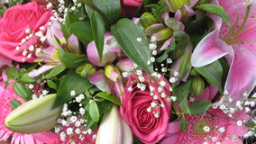 Estuque das flores Fotos de Stock
