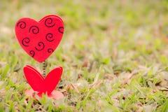 Esvazie das formas do coração da moldura para retrato no fundo da grama verde Imagens de Stock