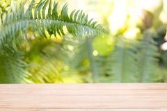 Esvazie do tampo da mesa de madeira no borrão do sumário verde fresco f da natureza fotografia de stock