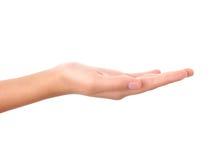 Esvazie a mão aberta