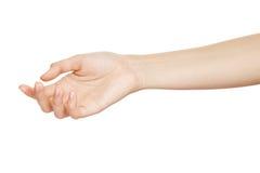 Esvazie a mão aberta da mulher fotos de stock royalty free